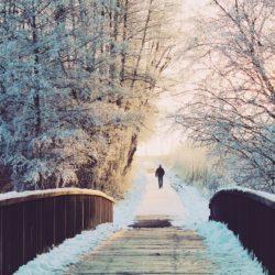 Reiterhof-Winter