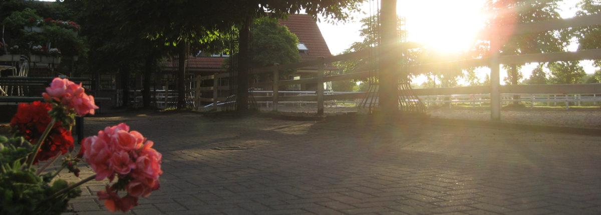 Reiterhof Sonnenaufgang
